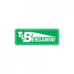 Parceiro Bergamini